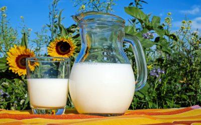 Milyen tejet igyon a gyermek?- a táplálkozási szakértő válaszol